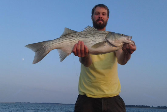 //www.in-fisherman.com/files/master-angler-2013/hybrid-striped-bass-jesse-date-26-inches-in-fisherman.jpg