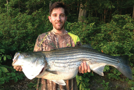 //www.in-fisherman.com/files/master-angler-2013/striped-bass-david-tanner-sykesville-md-40-inches-in-fisherman.jpg