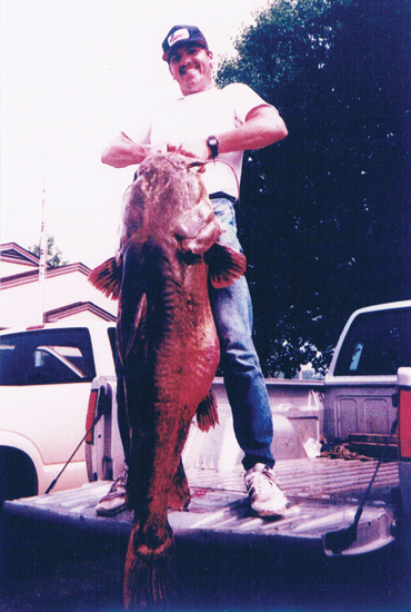 //www.in-fisherman.com/files/record-flathead-catfish/all-tackle-world-record-catfish-ken-paulie-in-fisherman.jpg