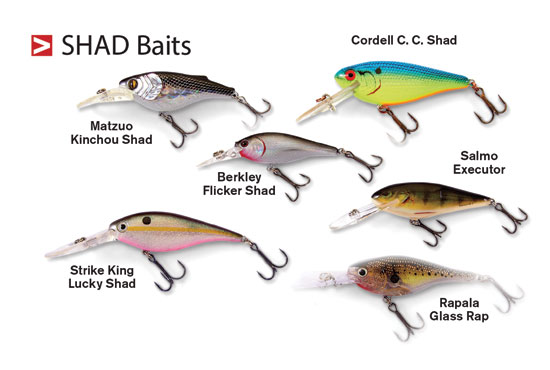 //www.in-fisherman.com/files/walleye-hardbaits/shad-baits-in-fisherman.jpg