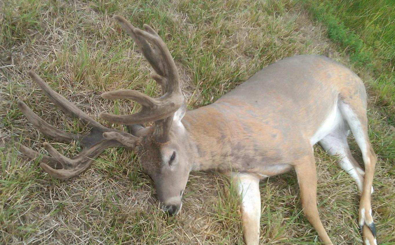 deer hunter dies