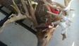 MIke Hanback Big Deer TV