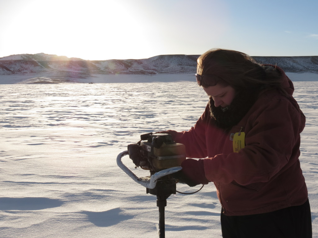 Heidi McMillin makes use of an ice auger during day one of the Meeteetsee Ice Fishing derby in Meeteetsee, Wyoming