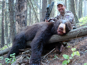 Jim Kinsey's Self Climber bear from his hunt in Montana.