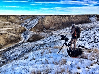 Glassing for muleys under Montana's big sky.