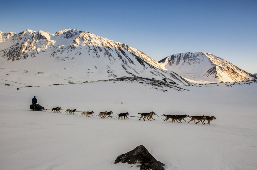 Bruce Linton crests the summit of Rainy Pass in the Alaska Range during the  2011 Iditarod. -Jeff Schultz/Iditarod Trail Committee
