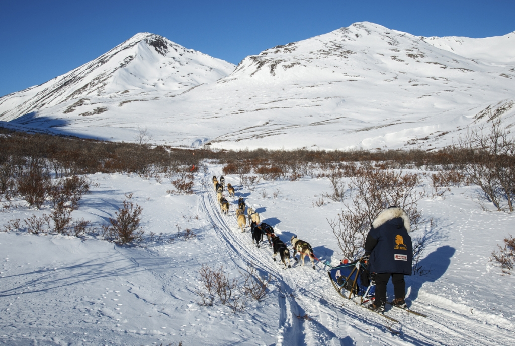 Hugh Neff on the trail near the summit of Rainy Pass in the Alaska Range during the  2011 Iditarod. -Jeff Schultz/Iditarod Trail Committee
