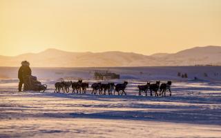 Iditarod Renews TV Deal With Sportsman Channel