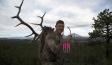 Easton Bowhunting - Elk