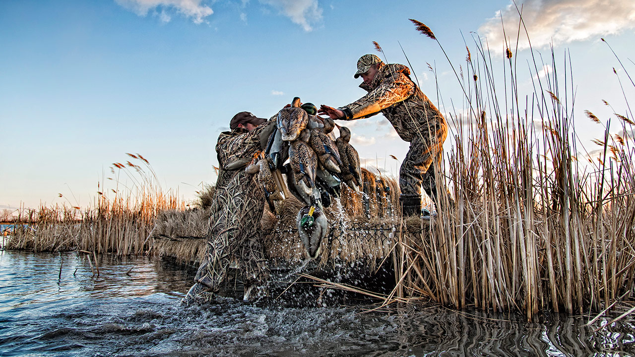 field for decoys gear marsh avian blind blinds supplies waterfowl angie inside canadian and frame xa