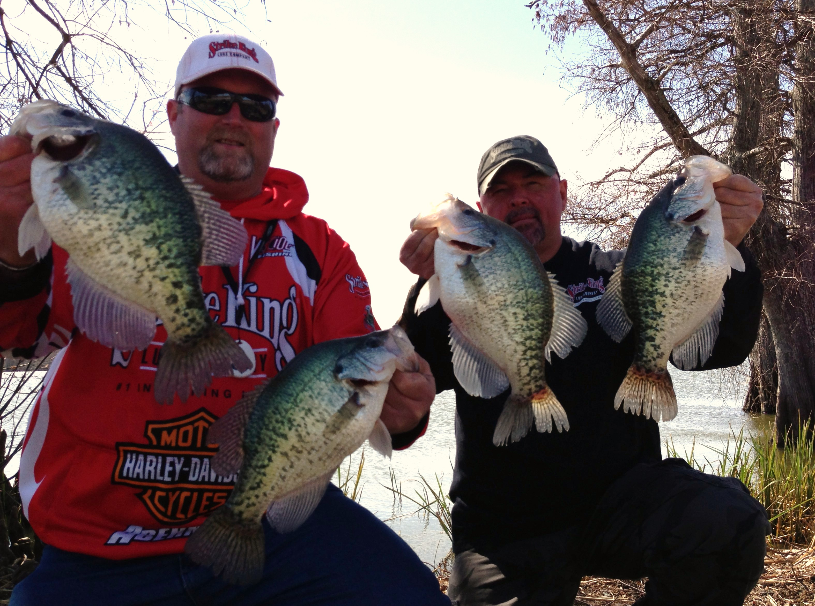 Mississippi washington county chatham - Proof Of The Pudding Tim And I With Some Of The Giant Slab Crappie Of