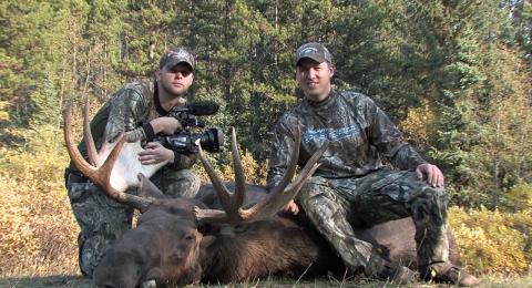 hardcore pursuit - moose
