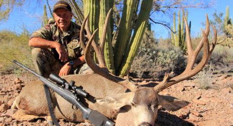 team dark horn - mule deer