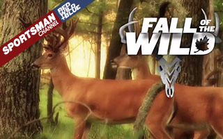 Fall of the Wild Lineup Features 450 New Episodes