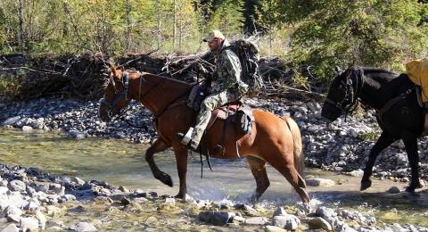 destination xtreme alberta horseback