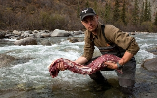 MeatEater Partners with Remington