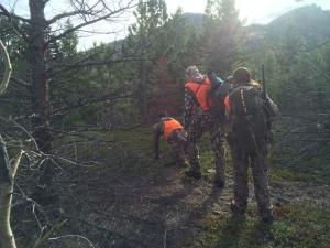 Bo traverses the rugged terrain
