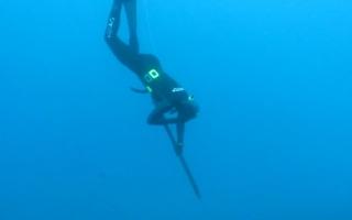 Apex Predator Dives Into Season Finale as an Otter