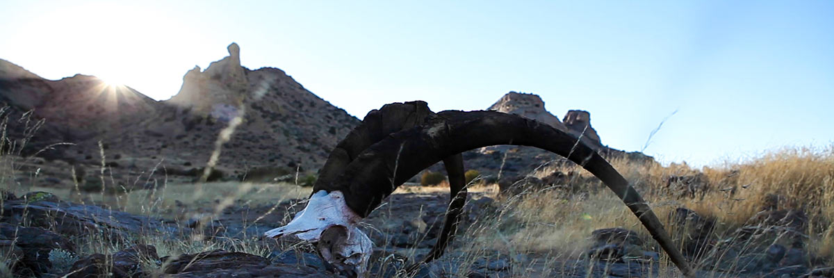 The Rock – An Ibex Adventure