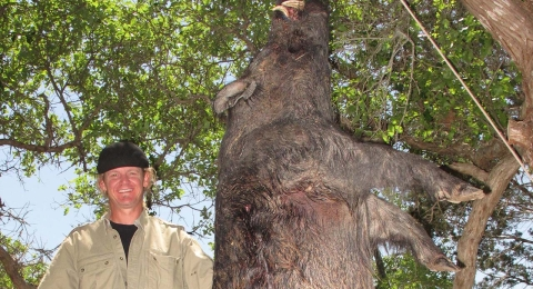 Razor Dobbs Alive Hog Hunt