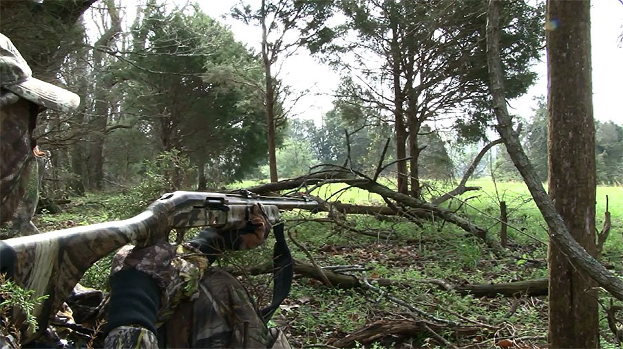 4 Must-know Turkey Hunting Setup Tips