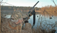 duck-hunting-over-small-pong