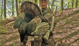 how-to-hunt-pressured-tom-turkeys