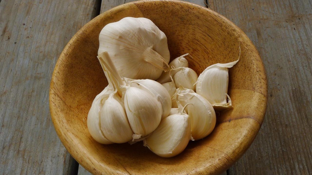 Garlic Wild Turkey Breast Recipe