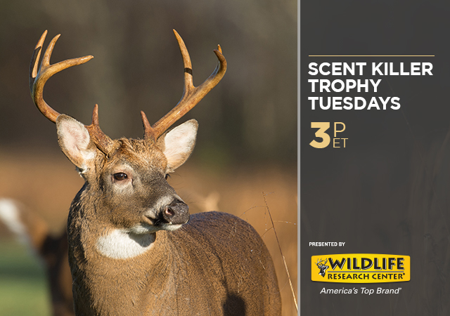 Scent Killer Trophy Tuesdays