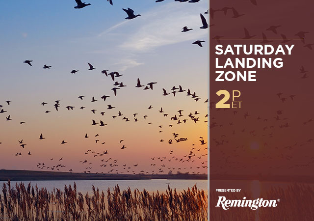 Saturday Landing Zone Presented by Remington