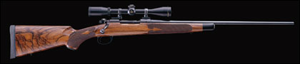 Winchester's Model 70 bolt-action rifle is without a doubt, one of the darlings