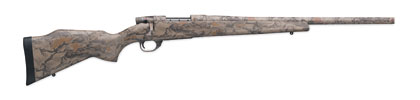 More New Varmint Rifles