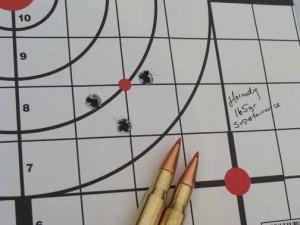 CZ 550 target