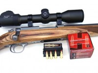Ruger M77/17 in .17 Hornet