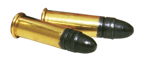 CCI Quiet-22 rounds