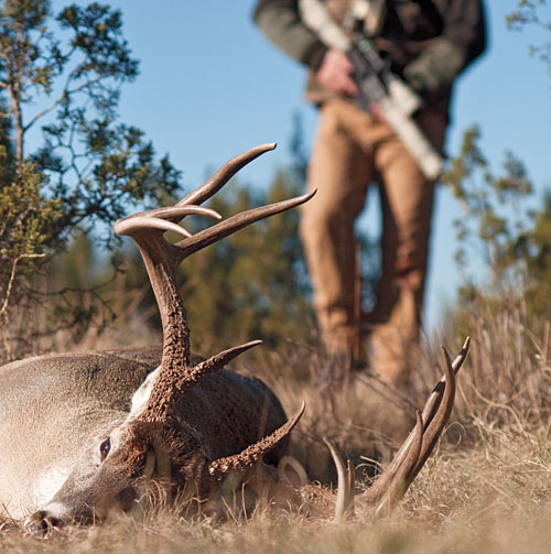 Semi-Auto Rifles for Hunting Still Not Allowed in Pa.
