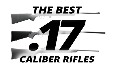 Two calibers stand out among those of .17-diameter; the .17 HMR and the .17 Remington.