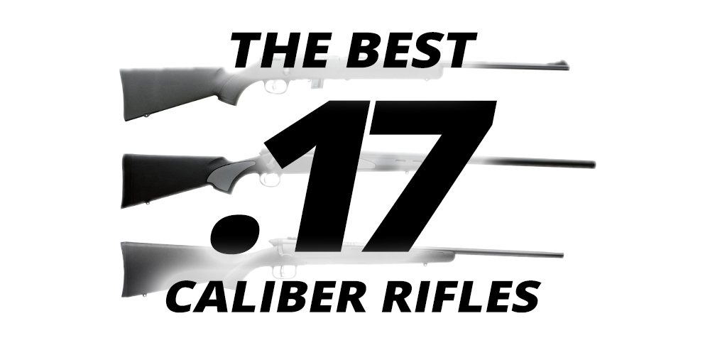 The Best .17-Caliber Rifles Available Today