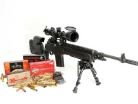 springfield-m1a-loaded-F