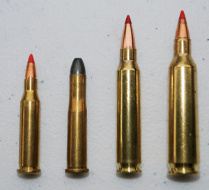 (From l.): .17 Hornet, .22 Hornet, .223 Rem., .22-250 Rem. Some states allow any centerfire for deer, which means the .17s and mild .22 centerfires are in play, but Boddington doesn't recommend them. The .223 and .22-250 are okay if used correctly.