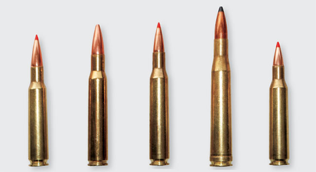 Boddington's top picks for classic cartridges that still get the job done today include (l.-r., in chronological order): 7x57, .30-06, .270 Win., .300 H&H and .257 Roberts.