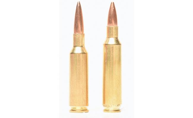 """http://www.rifleshootermag.com/files/2018/04/224VAlkyrierounds.jpg"""
