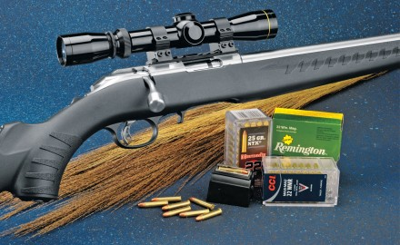 Today, Ruger still makes solid guns for rimfire rounds, and the latest is a new version of the American Rimfire series-a stainless.