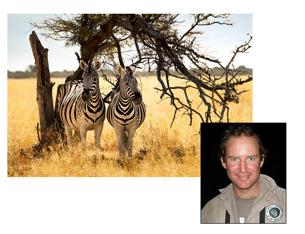 //www.rifleshootermag.com/files/ph-rifle-suggestions-for-10-popular-african-hunts/07_zebra_050112.jpg