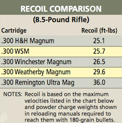 Pros & Cons of the  300 Magnums