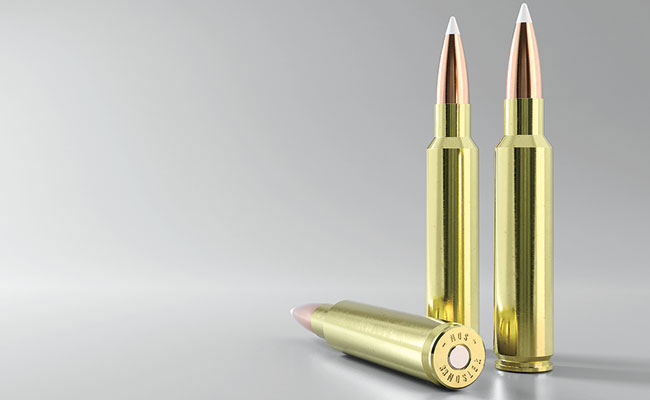 The  33 Nosler