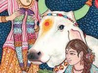 sacred cow 022112