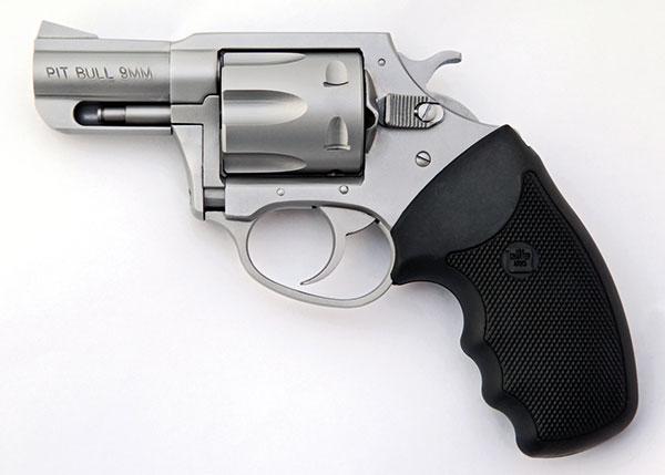Charter-Arms-Pitbull_002