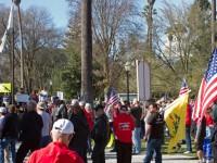 gun-rally