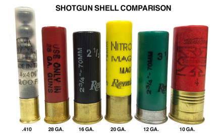 shotgun_shell_comparison_gauge_F